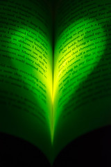 19 Jan: Envy (elleaj13) Tags: macro green book heart romance explore sin romantic envy sevendeadlysins favoritecolor 105mm 2016 greenwithenvy booklove d7100 project366 33books 52in2016challenge