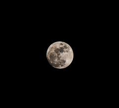 Moon - Christmas Night (bethaql) Tags: park christmas parque moon night navidad noche ciudad luna navidades nocturna torrox jerez 2015 soleado jerezdelafrontera manuelguerrero lagunadetorrox afueradejerez manuelguerrerojerez