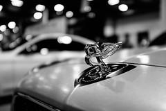 bentley (BPPrice) Tags: show blackandwhite bw monochrome car houston brando bentley