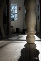 jour11-276 en-dessous (benoitfontaine442) Tags: blanc ombreetlumière endessous