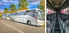 CE Limo Line Motor Coach (Carolina's Executive Limo Line) Tags: wild bus sc palms island corporate coach dunes group limo line resort kiawah mount charleston retreat transportation shuttle service motor executive isle pleasant minibus seabrook carolinas