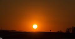 good night (Wenninger Johannes) Tags: sunset sun linz austria sterreich sonnenuntergang sunsets sonne wilhering