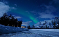 Northern_Lights_19_02_2016_IV (LyonelPerabo) Tags: blue winter light sky cloud snow green ice norway night clouds dark landscape lights norge skies darkness cloudy snowy north arctic norwegian nighttime aurora nordic polar february icy northern nord northernlights auroraborealis tromso troms troms 2016 northnorway northernlight