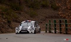 Ford Fiesta WRC - Lions (tomasm06) Tags: auto sport race rally course rallye paysdegrasse fordfiestawrc