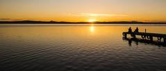Relax (Miguel Sala) Tags: sunset lake valencia docks relax lago golden pier spain friendship calm embarcadero puestadesol amistad magicmoments goldenhour dorado albufera momentosmagicos momentosunicos
