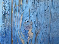 Peeling Paint Blue (Brix5) Tags: blue canada texture fence paint britishcolumbia peelingpaint brix5 canong16