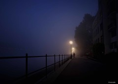 on the riverside (Ren Mollet) Tags: street blue fog night dark nightshot riverside nacht earlymorning streetphotography basel 24 blau rhein bluelight blueseries renmollet