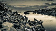 (Rodrigocolagrossi) Tags: dog naturaleza love nature argentina rio rock river 50mm buenosaires nikon shoot lila perro nubes basura shooting nublado 1855mm contaminacion olivos nube d5100 nikond5100 portaitdog