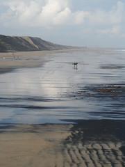 Coal surfers (Nekoglyph) Tags: black beach wet silver reflections seaside sand surfer yorkshire cleveland cliffs surfboard saltburn seacoal
