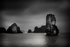 Sentinel (Marshall Ward) Tags: cruise seascape monochrome landscape mono asia southeastasia fineart vietnam halongbay 2016 nikond800 afszoomnikkor2470mmf28ged marshallward