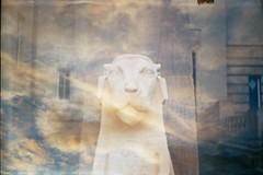 No words left to speak (AirSonka) Tags: sky sunlight film statue sphinx analog 35mm lomo doubleexposure lion analogue chimera cottbus smena smena8m doubleexposed pelcula filmphotography pellicule agfavista200 airsonka doppelbelichtung staatstheatercottbus soniakaniss