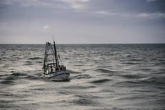 Kathryn (M J Adamson) Tags: ocean sea newzealand boats coast coastal nz fishingboats tasmansea westcoast westcoastholiday2016