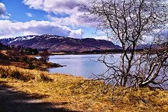 Loch off the tourist track. (Fr Paul Hackett) Tags: mountain tree water dam loch spey hidded