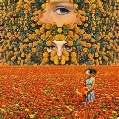 Eyes on flowers (Mariano Peccinetti Collage Art) Tags: flowers camp moon art collage yoga vintage rainbow 60s arte desert surrealism space dream surreal retro lsd fullmoon collageart 70s surrealist meditation saturn trippy psychedelic cosmic psych cutandpaste dmt globular vintageart collageartist peccinetti collagealinfinito marianopeccinetti