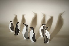 Origami Penguins (edg82) Tags: white black cold birds paper penguin origami fold kami emperorpenguin