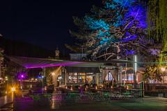 Colours of the night (alxfink) Tags: tree night garden lumix lights restaurant switzerland atmosphere thun