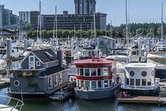 DSC07124 Vancouver Marina (Flybr1dge) Tags: canada vancouver marina boats yachts coalharbour houseboats coalharbourmarina