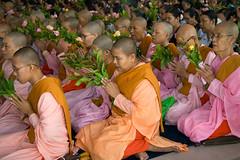 Mistic Moments (piper969) Tags: flowers temple yangon burma prayer religion pray monks myanmar fiori budda rangoon tempio preghiera bhudda swedagon pregare monaci birmania buddismo swedagonpaya