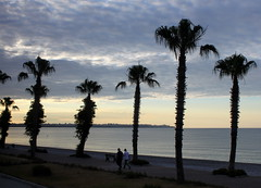 antalya palms (kexi) Tags: morning sea 2 two sky people beach water clouds sunrise canon turkey palms walking coast seaside couple mediterranean pair may silhouettes tranquility palmtrees antalya shore 2015 instantfave