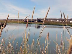 House (chiarafratocchi) Tags: summer sky panorama house nature landscape lago casa iceland estate cielo pap riflesso islanda spighe mulinobianco