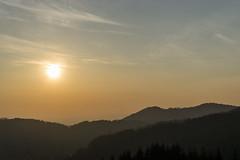 Black_Forest_3 (Conr0se) Tags: sunset landscape blackforest