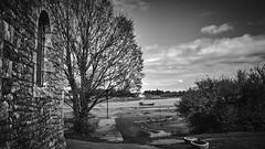 (thierrylothon) Tags: france monochrome flickr lumire sony bretagne paysage fr morbihan publication noirblanc c1pro captureonepro phaseone saintphilibert sonya7m2 fe35mmf14za fluxapple sonyzeissfe35mmf14za
