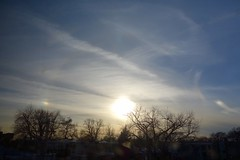 sun dogs (KevinIrvineChi) Tags: blue trees sky usa dog sun chicago dogs silhouette clouds america train outside outdoors illinois rainbow afternoon cta outdoor sony united trails silhouettes halo sunny bluesky trail states lakeview lateafternoon chicagoist dscrx100