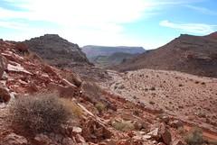 (Mathias Dezetter) Tags: wild naturaleza sahara nature montagne desert pierre relief morocco maroc vegetation colline flore grs sauvage brousse rocaille aride desertique bouli xrophyte