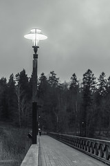 Solitude (Down_BSC) Tags: wood bridge winter light lamp robin solitude millqvist