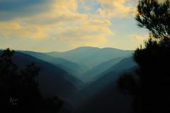 sis / fog (photographerofearth) Tags: mountain fog canon sis izmir orman foggyforest 1200d balovatesisleri