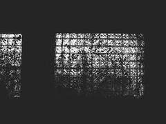 { obstructed } (Web-Betty) Tags: blackandwhite window night bnw fujineopan1600 vscofilm