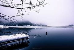 The Cold Silence (Fredrik Lindedal) Tags: morning trees mist lake cold reflection ice water fog landscape nikon sweden jetty calm silence sverige scandinavian icedrops fredriklindedal