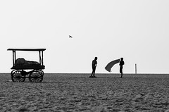 Drying out (1/4th) Tags: street blackandwhite bw india beach monochrome silhouette marina sand nikon minimal highkey cart minimalism nikkor marinabeach chennai minimalist tamilnadu roi cwc dryingout  nikon80200mmf28d 80200mmf28dnew  shadesofsummer d7000 rootsofindia chennaiweekendclickers roiwalk  cwc441 roinationwidewalkii