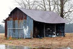 Rural America #17 (Gabriel FW Koch) Tags: building barn canon outside eos dof bokeh outdoor farm hannah shed rusty stormy billboard rainy raining messages blustery