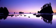 Purple Night (Elevation 5280 Photography) Tags: sunset film washington kodak ishootfilm explore pacificocean 4x5 olympicnationalpark secondbeach kodake100g 6x12 filmisnotdead getoutstayout ilovekodake100g