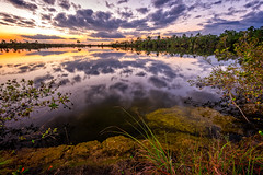 Pine Glades Lake Sunset (miraballaw) Tags: sunset clouds reflections evergladesnationalpark floridaeverglades fineartphotography naturephotography floridalandscapes naturephotographer enp pinegladeslake