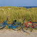 Amagerstrand - A couple of  bikes