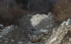 coule de neige dans le torrent de Fully (bulbocode909) Tags: nature suisse hiver arbres ravine neige rochers valais montagnes avalanches forts