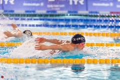 DSC_2906_300116_1222 (Kristiansand svmmeallianse) Tags: green swimming swim skagerrak kristiansand ksa aquaram skagerrakswim2016