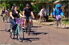 4619 (AJVaughn.com) Tags: park new arizona people beach beer colors bike bicycle sport alan brewing de james tour belgium bright cosplay outdoor fat parade bicycles vehicle athlete vaughn tempe 2014 custome ajvaughn