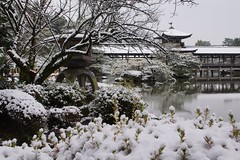 (nobuflickr) Tags: winter snow nature japan kyoto    heianjingushrine  20160120dsc09927