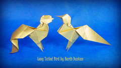 Long Tailed Bird by Barth Dunkan (Thomas Krapf Origami) Tags: bird paper origami long foil tissue dunkan paperfolding barth tailed vogel papierfalten magicfingaz