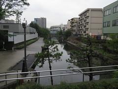 IMG_8713 (Momo1435) Tags: japan tokyo koto kotoku