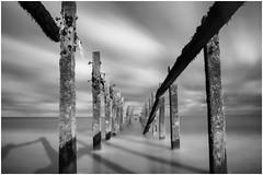 "Beach Groins Exposed (steiner2009 ""AKA Dr Dust "") Tags: wood old longexposure shadow sea sky blackandwhite beach sand coastline groins"