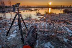 DSC01268-3 (Christian Wilmes) Tags: winter sun ice sunrise frost sony tripod pro alta eis sonnenaufgang dsc vanguard emsland stativ rx100 dohren hahnenmoor 263agh
