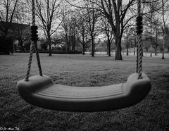 42-365 Swing on a frosty morning (tilljo112) Tags: morning trees blackandwhite bw monochrome garden outside blackwhite monochromatic swing photoaday 365 bromsgrove