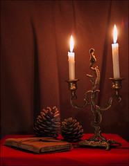 Pinecone (Maryam Buzaladze) Tags: life wood old trees light red brown tree vintage dark notebook 50mm still warm iron candle shadows canoneos10d indoor pinecone patience naturemorte