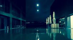 Rainy night (christophhornung142) Tags: red green rot colors yellow night vintage licht scary purple nacht leer sony illumination gelb blau farbe bume mannheim mystic beton violett luisenpark schirm langebelichtung strucher winterlichter sonyalpha6000 stimmunglichtknstler