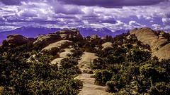 Devils Garden Fins & La Sal Mountains (woodchuckiam) Tags: sky mountains color rock landscape utah sandstone scenic vegetation archesnationalpark fins rockformations lasalmountains devilsgarden woodchuckiam devilsgardenfins