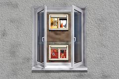 N12-la finestra sul cortile